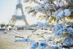 Árbol de navidad cubierto con nieve cerca de torre Eiffel Foto de archivo libre de regalías