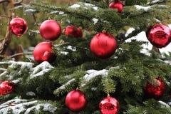 Árbol de navidad cubierto con nieve y adornado con las bolas rojas Imágenes de archivo libres de regalías