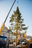 Árbol de navidad de Estrasburgo erigido Fotos de archivo libres de regalías