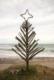 Árbol de navidad de la madera de deriva, playa de Pouaua, Gisborne, Nueva Zelanda fotos de archivo