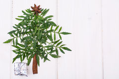 Árbol de navidad de Minimalistic hecho de la planta de jardín en los tableros blancos Fotos de archivo
