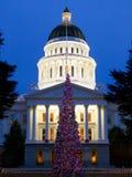 Árbol de navidad del capitolio Imagen de archivo