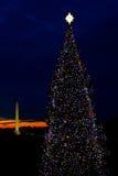 Árbol de navidad del Washington DC Foto de archivo libre de regalías