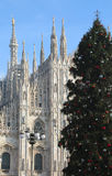 Árbol de navidad delante de la catedral de Milano en Italia Imagen de archivo