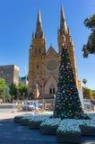 Árbol de navidad delante de la catedral de St Mary s Foto de archivo libre de regalías