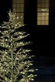 Árbol de navidad delicado de la luz blanca imagen de archivo