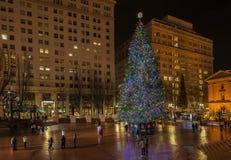 Árbol de navidad - diciembre, 14 2014 El árbol de navidad principal en capitolio del estado de Washington Imágenes de archivo libres de regalías