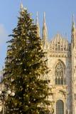 Árbol de navidad e iglesia de monasterio, Milán Imágenes de archivo libres de regalías