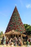 Árbol de navidad en Belén, Palestina Imágenes de archivo libres de regalías