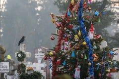 Árbol de navidad en cementerio Foto de archivo libre de regalías