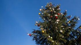Árbol de navidad en fondo del cielo azul Imagen de archivo libre de regalías