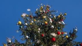 Árbol de navidad en fondo del cielo azul Fotografía de archivo