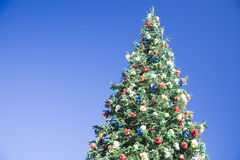 Árbol de navidad en fondo del cielo azul Fotos de archivo