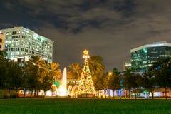 Árbol de navidad en Fort Lauderdale del parque, la Florida, los E.E.U.U. Foto de archivo libre de regalías