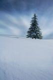 Árbol de navidad en invierno Foto de archivo libre de regalías