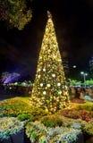 Árbol de navidad en la catedral Sydney de St Mary Fotos de archivo libres de regalías