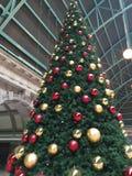 Árbol de navidad en la ciudad Fotografía de archivo