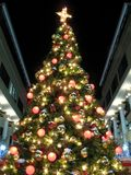 Árbol de navidad en la noche Imagen de archivo