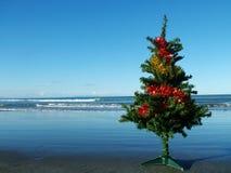 Árbol de navidad en la playa Fotos de archivo libres de regalías