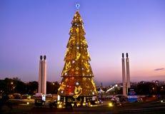 Árbol de navidad en Lisboa Imágenes de archivo libres de regalías
