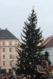 Árbol de navidad en mercados de la Navidad en el mercado de la col en Brn Fotos de archivo libres de regalías
