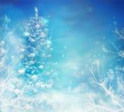 Árbol de navidad en nieve Fondo congelado invierno fotos de archivo libres de regalías