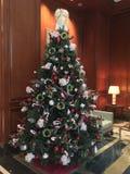 Árbol de navidad en sala de estar imagen de archivo libre de regalías