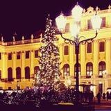 Árbol de navidad en Schobrunn Imagenes de archivo