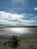Árbol de navidad en una playa Fotografía de archivo
