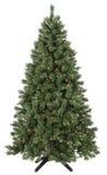 Árbol de navidad encendido Fotografía de archivo libre de regalías