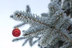 Árbol de navidad encendido Fotos de archivo