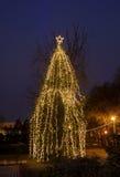 Árbol de navidad encendido coloreado con los ornamentos, noche al aire libre Fotografía de archivo libre de regalías
