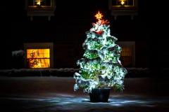 Árbol de navidad encendido en la noche Imágenes de archivo libres de regalías