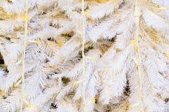 Árbol de navidad enorme blanco imágenes de archivo libres de regalías