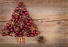 Árbol de navidad hecho del canela, del anís y de la perro-rosa Fotografía de archivo