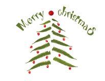 Árbol de navidad hecho de las hojas y de las bayas del helecho en el fondo blanco Fotos de archivo libres de regalías