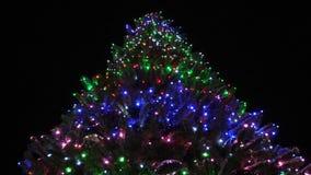 Árbol de navidad hermoso en el parque de la ciudad, adornado con las guirnaldas y los globos coloreados en el cielo nocturno poca almacen de metraje de vídeo