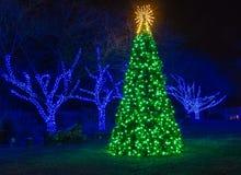 Árbol de navidad iluminado al aire libre foto de archivo