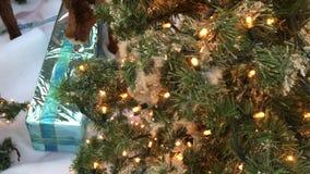 Árbol de navidad de la celebración almacen de video