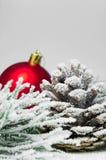 Árbol de navidad de la rama Nevado y cono y bola roja en el fondo de madera blanco del vintage Fotografía de archivo libre de regalías