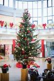 Árbol de navidad majestuoso en centro comercial Imágenes de archivo libres de regalías
