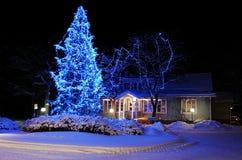Árbol de navidad maravillosamente adornado Imagenes de archivo