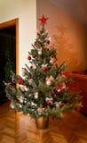 Árbol de navidad natural foto de archivo libre de regalías
