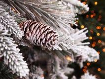 Árbol de navidad Nevado Pinecone Foto de archivo libre de regalías