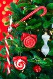 Árbol de navidad noble del pino con los bastones de caramelo Imagenes de archivo