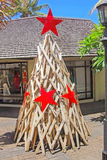 Árbol de navidad para la Navidad en Mauricio Imagen de archivo