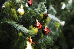 Árbol de navidad por el Año Nuevo fotografía de archivo libre de regalías