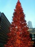Árbol de navidad rojo San Francisco Fotografía de archivo libre de regalías