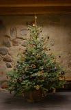 Árbol de navidad tradicional foto de archivo