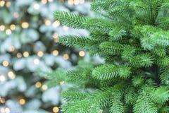 Árbol de navidad verde en un fondo blanco con el bokeh fotos de archivo